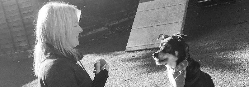 Laura in a training session with a dog